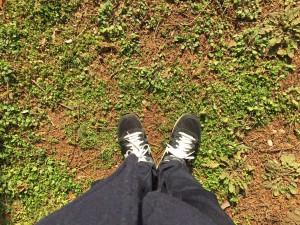 雑草の花ツアー